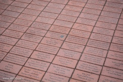 Fan bricks on Championship Plaza