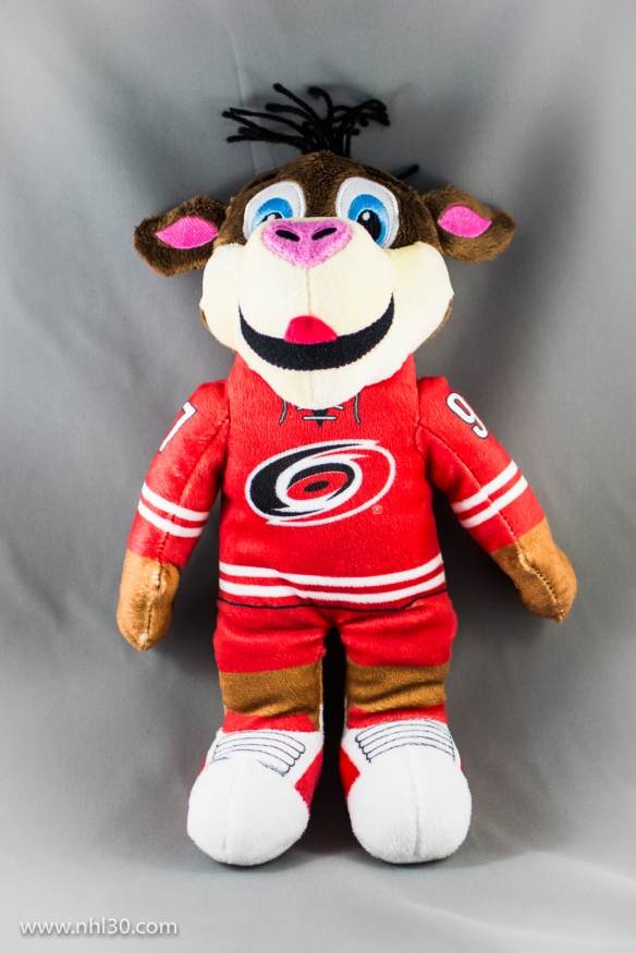 Carolina Hurricanes - Stormy