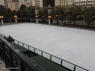 Skating rink at Millenium Park